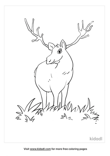moose coloring picture_5_lg.png