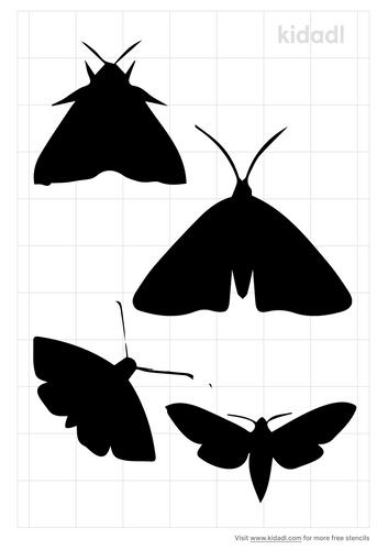 moth-stencil