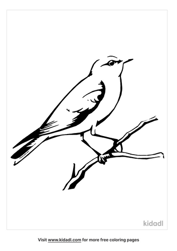 mountain-bluebird-coloring-page.png