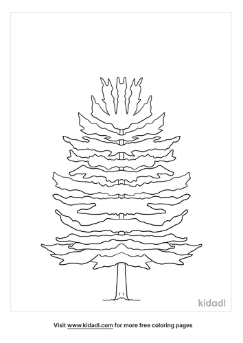 nc-state-tree-coloring-page.png