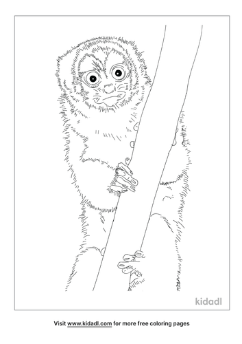 night-monkey-coloring-page
