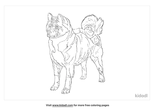 norwegian-elkhound-coloring-page