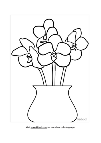 orchid picture-3-lg.png
