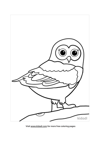 owl coloring pages-3-lg.png
