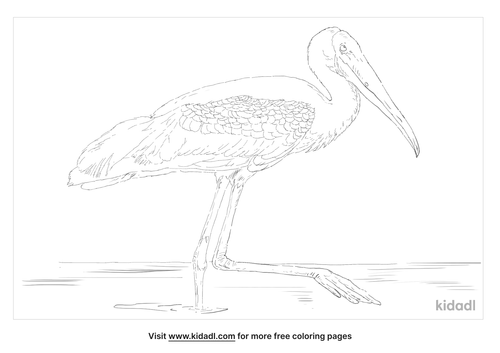 painted-stork-coloring-page