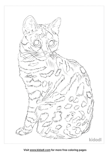 pampas-cat-coloring-page