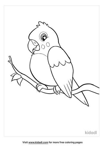 parakeet coloring page-2-lg.png