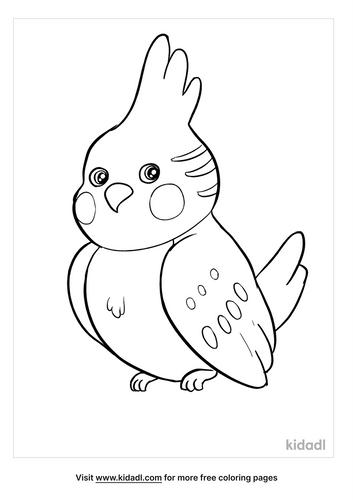 parakeet coloring page-3-lg.png