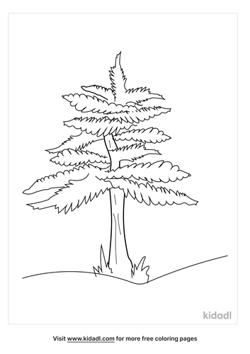 pennsylvania-state-flag-tree-coloring-page.png