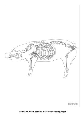 pig-skeleton-coloring pages.png
