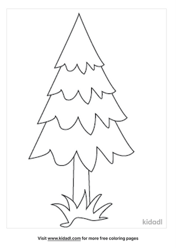pine-tree-coloring-pages-1-lg.png