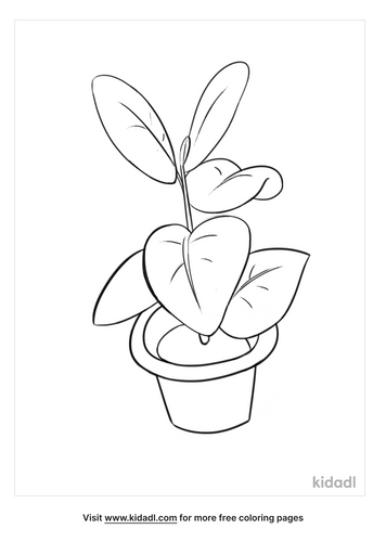 plant drawing-5-lg.png