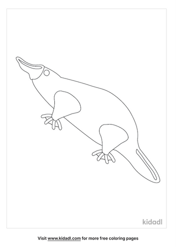 platypus-coloring-pages-1-lg.png