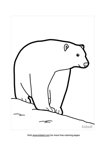 polar bear coloring pages-5-lg.png