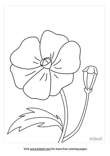 poppy coloring page_2_lg.png