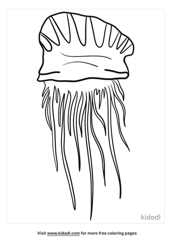 portuguese-man-of-war-coloring-pages.png