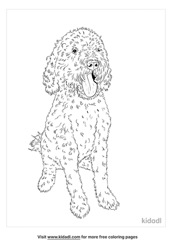 portuguese-water-dog-coloring-page