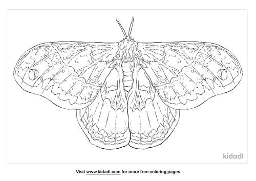 promethea-moth-coloring-page