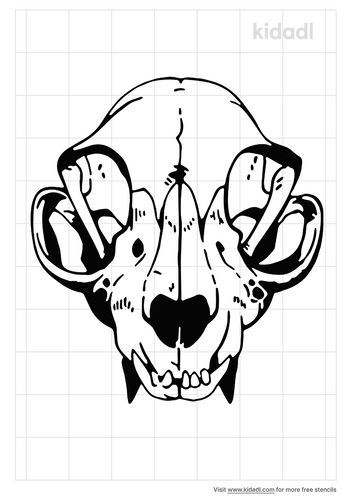 raccoon-skull-stencil.png