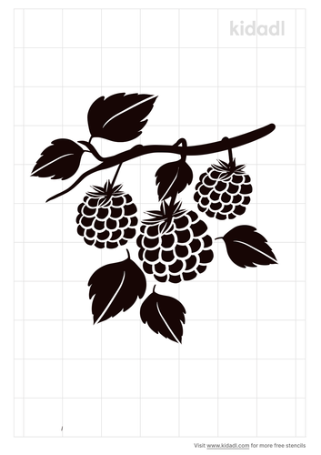 raspberry-wines-stencil.png