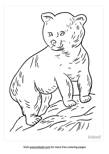 realistic-bear-cub-coloring-pages-1-lg.png