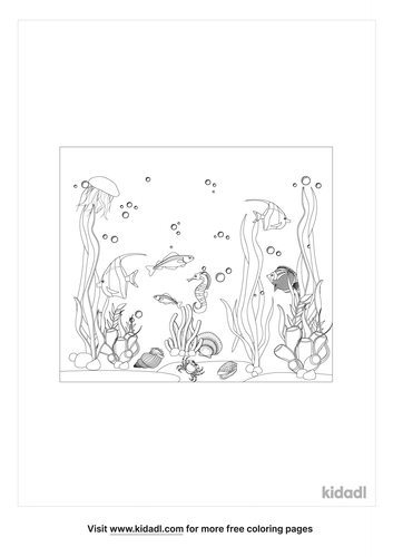 realistic-coral-reef-coloring-page.png