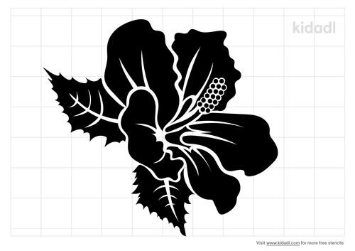 realistic-hibisccus-stencil.png