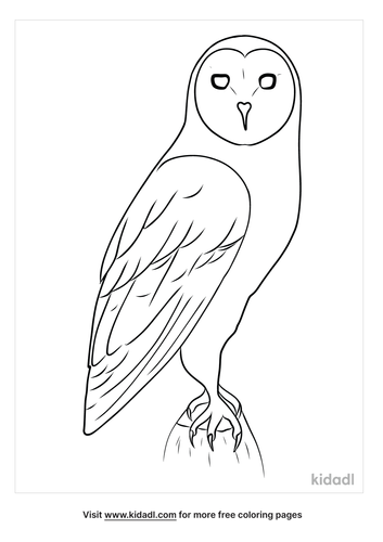 realistic-owl-coloring-pages-1-lg.png