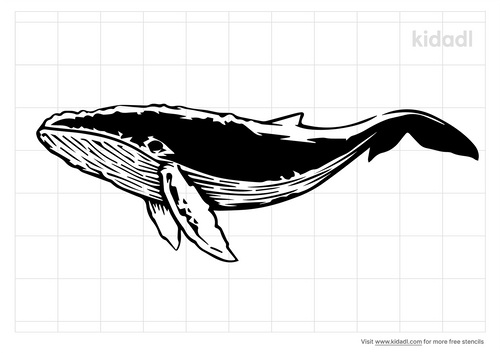 realistic-whale-wall.png