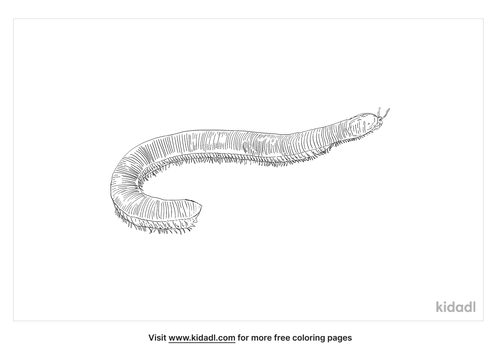 red-millipede-coloring-page
