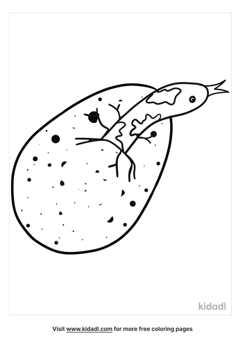 reptile-eggs-coloring-pages.png