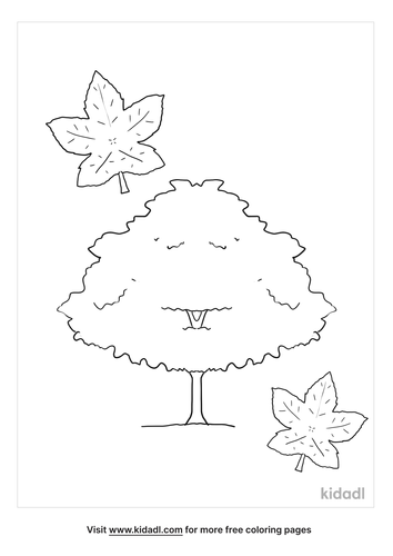 rhode-island-red-maple-coloring-page.png