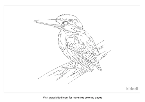rufous-backed-kingfisher-coloring-page