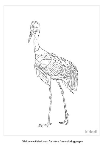 saddle-billed-stork-coloring-page