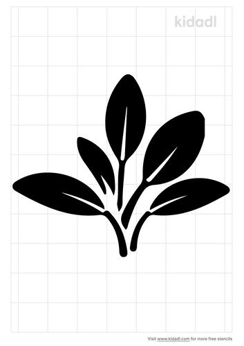sage-stencil.png