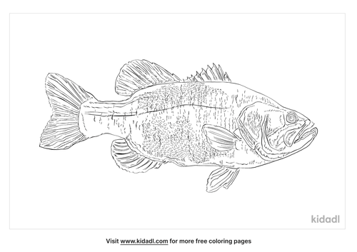saltwater-fish-coloring-page