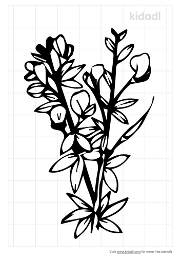 scotch-broom-stencil