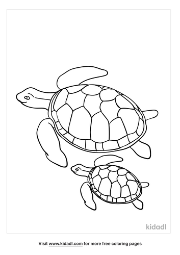 sea-turtle-with-babies-coloring-page.png