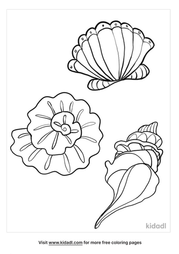 seashell coloring page-2-lg.png