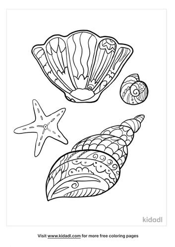 seashell coloring page-3-lg.png