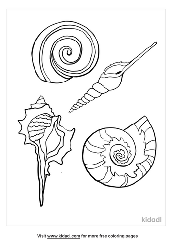 seashell coloring page-4-lg.png