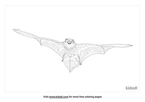 seminole-bat-coloring-page