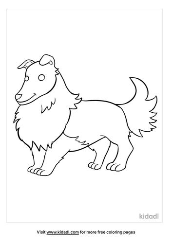 sheltie-coloring-pages-1-lg.jpg