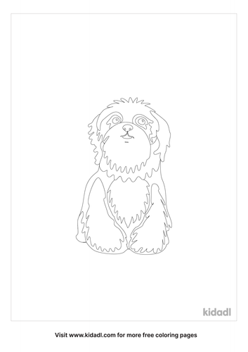 shepadoodle-coloring-pages-1-lg.png