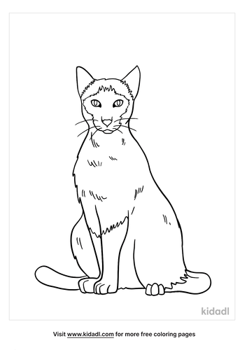 siamese cat coloring page-1-lg.png