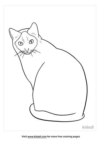 siamese cat coloring page-2-lg.png