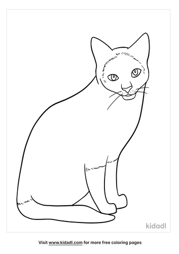 siamese cat coloring page-4-lg.png