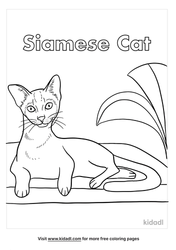 siamese cat coloring page-5-lg.png