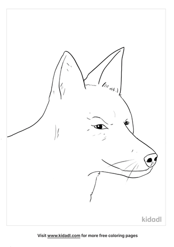 simple-coyote-head-coloring-page.png