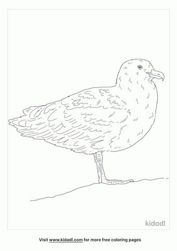 skuas-coloring-page